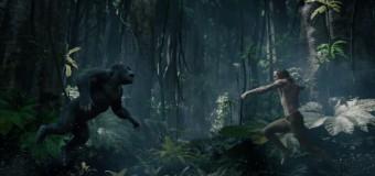 Primer trailer de 'La leyenda de Tarzán'