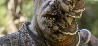 'The walking dead': review 8×11 ('Dead or alive or')