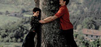 Tráiler de 'El Árbol de la Sangre', el esperado regreso de Julio Medem